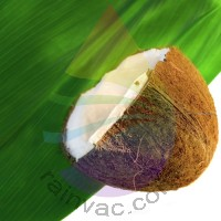 Coconut Fragrance for Rainbow and RainMate